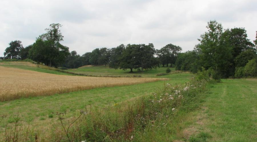 Ledsham and Fairburn Ings Evening Walk | OutdoorLads