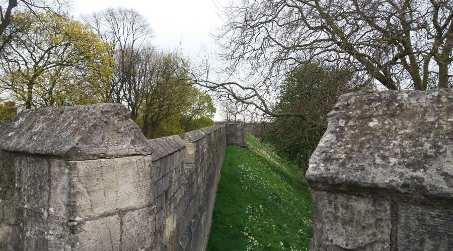 York City Wall View