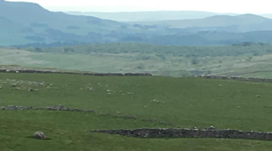 Dales View