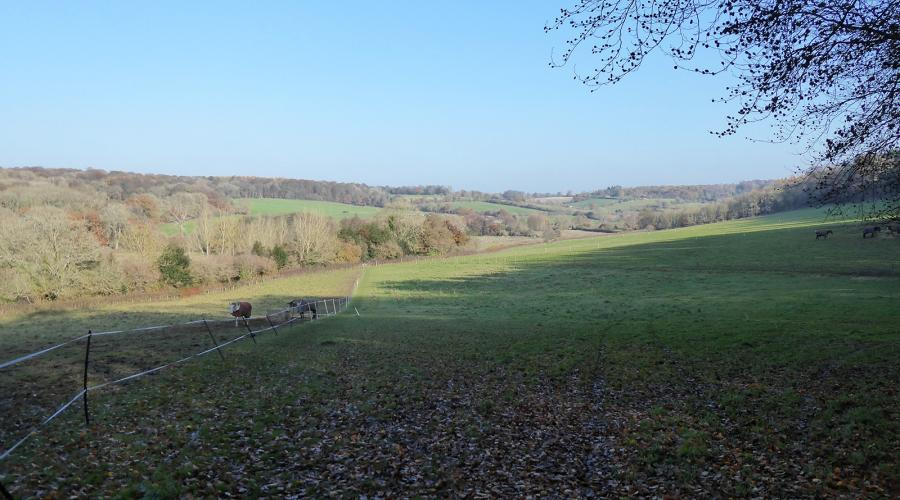 View of the Chess Valley