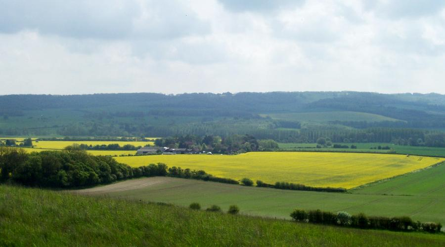 View of Stour Valley, Kent
