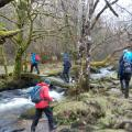 Dartmoor rivers PFR