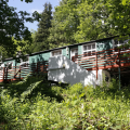 Blytheswood hostel in woodland setting