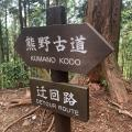 Walking the Komano Kodo