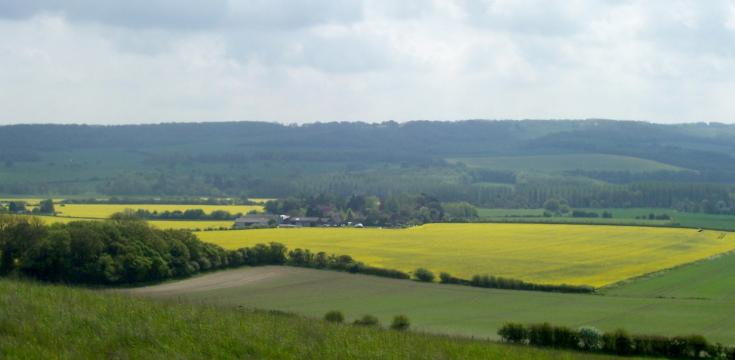 View of Stour Valley