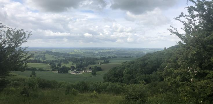 View from Stinchcombe Hill