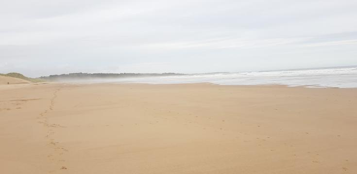 Warkworth Beach Taken By Markster